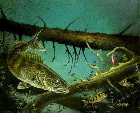 walleye drawings gamefish walleye deep sea fishing