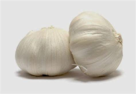 bawang putih 08575520100 jual kapsul bawang putih