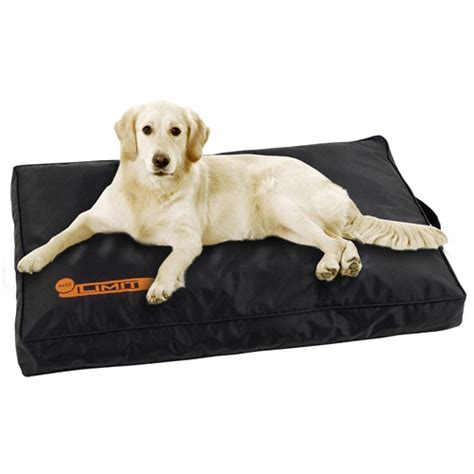matelas no limit en t 233 flon 174 tapis et matelas pour chien