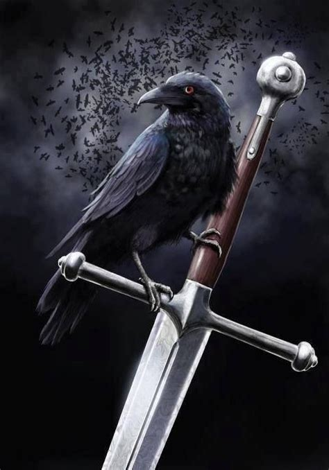 crow meaning ideas  pinterest crow tattoo