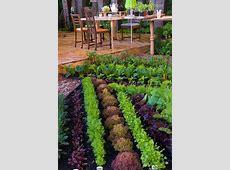 edible garden E and M's Metricon Adventure