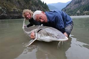 Prehistoric Terror – Episode Photos   River Monsters ...