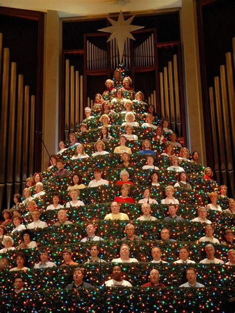 living christmas tree voted  holiday event alcom