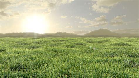 grassy plains    deviantart