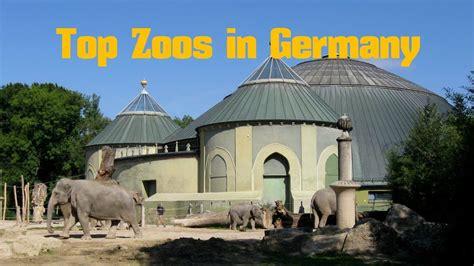 zoo germany zoos afkomstig mahal taj