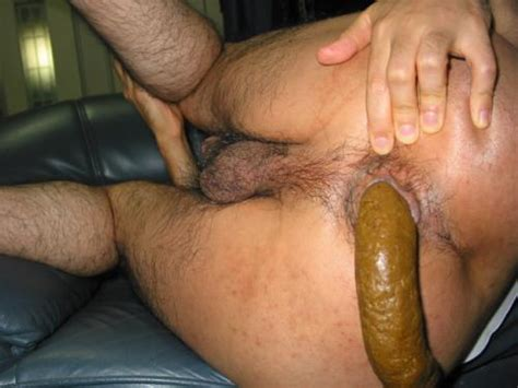 Male Hairy Ass Scat Bobs And Vagene