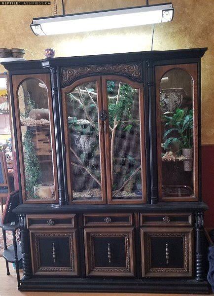 reptile classifieds beautiful custom snake cabinet pending pick