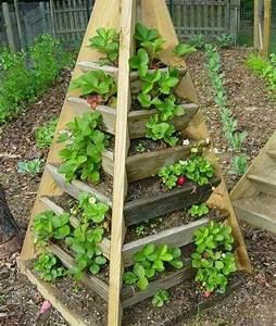 Potager Hors Sol : photos pinterest jardin potager gardenning pinterest ~ Premium-room.com Idées de Décoration