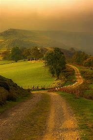 Winding Country Road Scenes