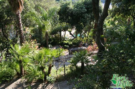 Negombo Ischia Prezzo Ingresso Parco Termale Negombo Piscine E Benessere Nel Verde