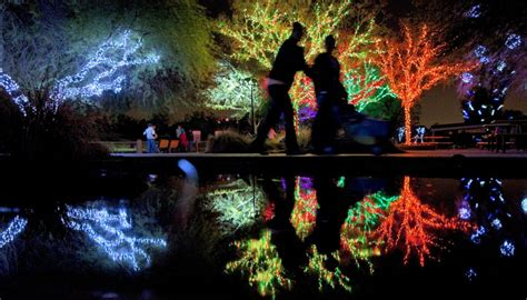 the 2012 zoo lights with in motion