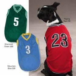 jazzy dog wear las vegas pet stores wwwjazzydogwearcom With dog clothes las vegas