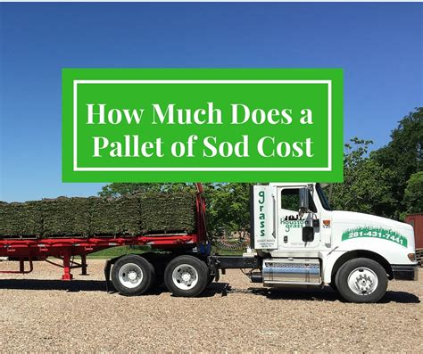 how much does a lawn cost how much does a pallet of sod cost houston sugar land pearland