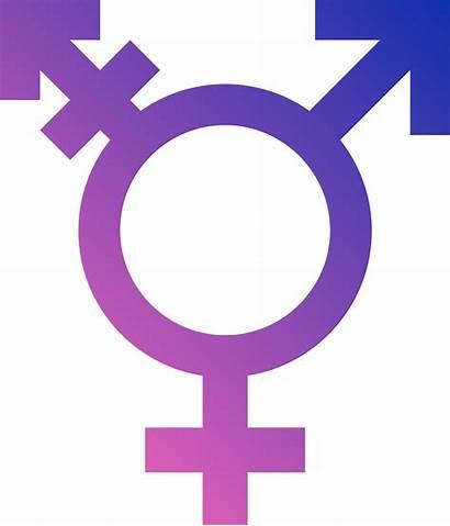 Symbols Transgender Gender Sign Symbol Trans Gay