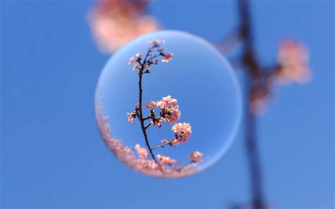 Pavasaris | Žmonės.lt