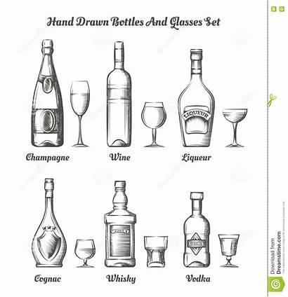 Alcohol Glasses Different Bottles Types Vector Bottle