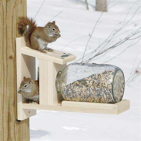 duncraft com duncraft 5729 squirrel jar feeder
