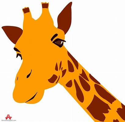 Giraffe Clipart Giraffes Clip Head Face Orange