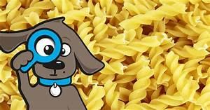 Nudeln Für Hunde : d rfen hunde nudeln essen tinki ~ Watch28wear.com Haus und Dekorationen