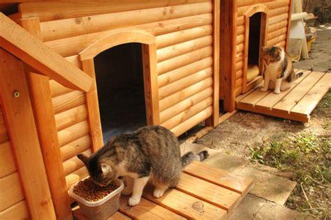 cabane pour chat jolies maisons caisses de mise bas dodos etc