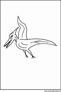 Flugdinosaurier Kostenlose Malvorlage Fr Kinder