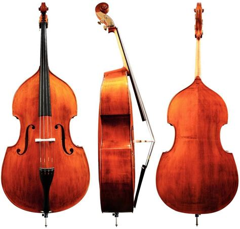 3 Of The Best Double Basses For Beginners  Normans News