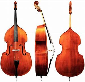 3 of The Best Double Basses for Beginners | Normans News