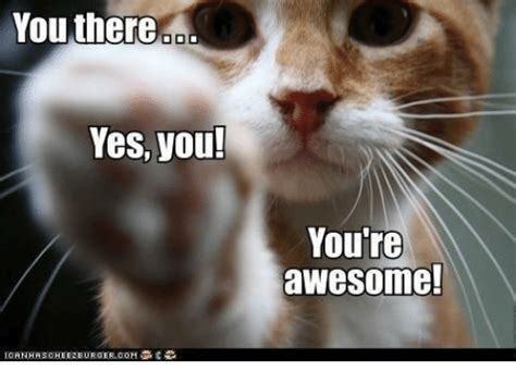 You Re Awesome Meme You There Yes You You Re Awesome Meme On Me Me