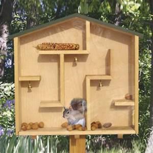 A-Mazing Squirrel House Plan WORKSHOP SUPPLY