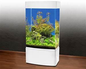 L Form Aquarium : panorama s ulen aquari um ghh 80 350l wei t5 ebay ~ Sanjose-hotels-ca.com Haus und Dekorationen