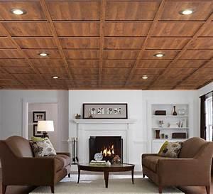 drop-ceiling-ideas-Basement-Traditional-with-basement-drop
