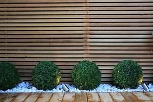 17 meilleures idees a propos de haies sur pinterest With jardin paysager avec piscine 0 piscines hors sol les differents types pratique fr