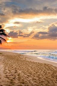 Beautiful Ocean Sunset Beach