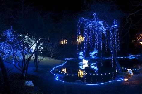 garvan gardens lights december s top 10 things to do ay mag ay is about you