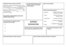 aerobic respiration worksheet by takht005 teaching