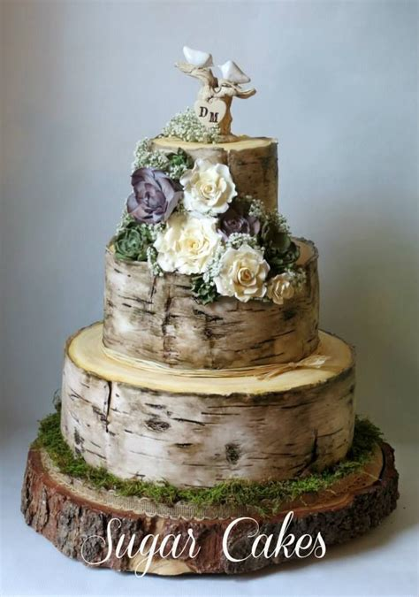 Birch Tree Wedding Cake With Handmade Succulents And Roses