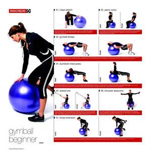 Exercise Ball Workouts Chart for Beginners