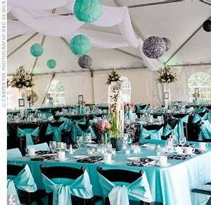 30 best images about Tiffany blue & chocolate brown ...