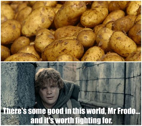 Meme Potato - lotr potato meme original memes pinterest lotr potato meme and meme