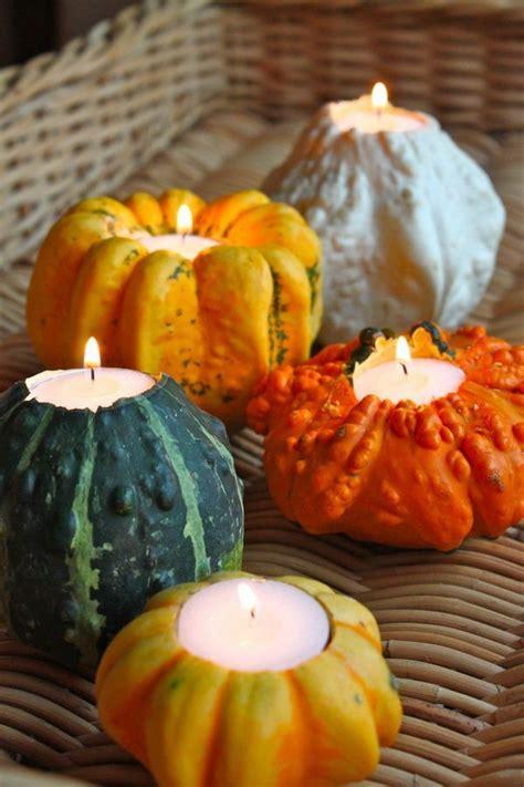 stylish diy pumpkin crafts  thanksgiving decoration