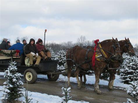 christmas tree farms pennsylvania pin by douglas on winter 5061