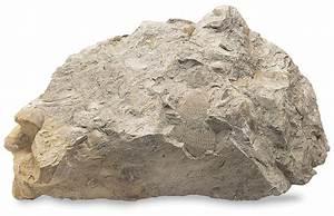 Sedimentary Rocks   Types Of Sedimentary Rocks   DK Find Out