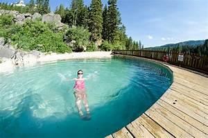 Pool Im Garten : gartenpool salzwasser pool im eigenen garten bauen ~ Michelbontemps.com Haus und Dekorationen