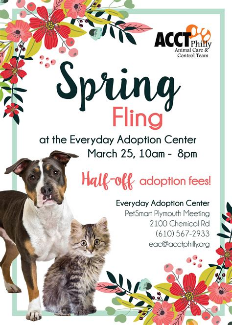 march adoption   promotions acct philly