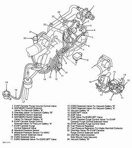 Vacuum Hose Diagram  I Have 1998 Nissan Sentra That Has A