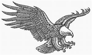 Eagle Landing Drawings