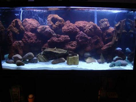 spencers lava l fish tank lava rock aquarium lava rocks and photos