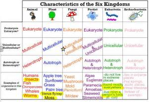 Six Kingdoms Classification Chart