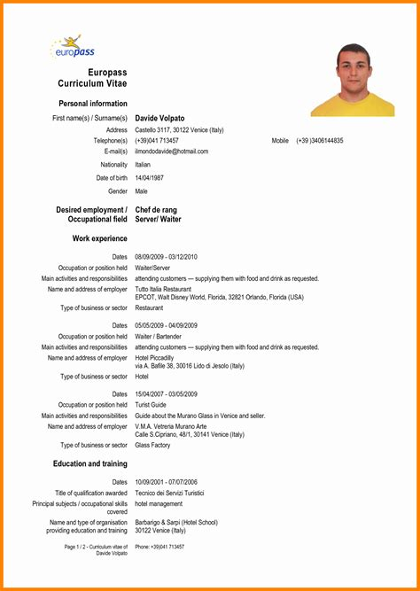 Forms Of Resumes by 8 Cv Forms Theorynpractice