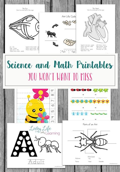 17 best ideas about preschool monthly themes on 279   0cf71e033381f709f55e0cbc30bea48d